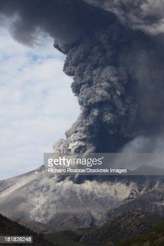 February 25, 2013 - Powerful explosive vulcanian eruption of Sakurajima volcano, Japan. Dense ash cloud rises high above the volcano.