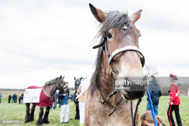 February 27th The Metworst Racing is an ancient horse race which is held on Monday Carnaval in Boxmeer each year Some even believe that the tradition...