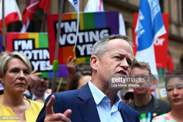 Federal Opposition Leader Bill Shorten speaks during a rally for marriage equality ahead of a national postal survey on September 10 2017 in Sydney...