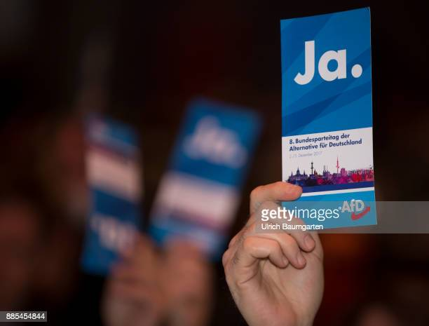 Federal Party Congress of Alternative for Germany Hand of a delegate with a red AfD vote card with the word YES
