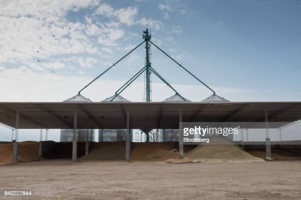 Feed supplement sits in a storage area at the Agro Holanda SA feedlot in Zarate Argentina on Monday Aug 7 2017 Argentina a major cow meat producer is...