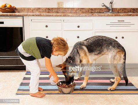 Feeding the family dog