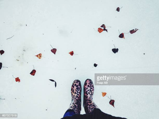feet at the snow