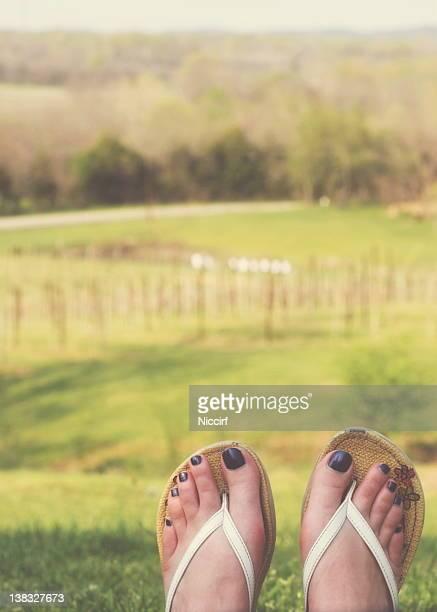 Feet at vineyard