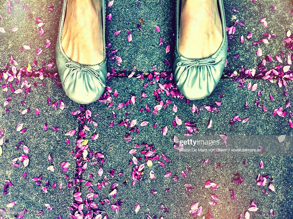 Feet in silver ballerinas on flower petals : Stock Photo