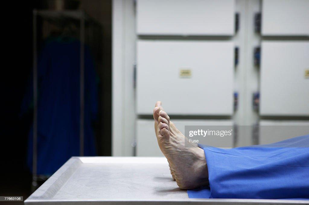Feet of Dead Person in Morgue : Stock Photo