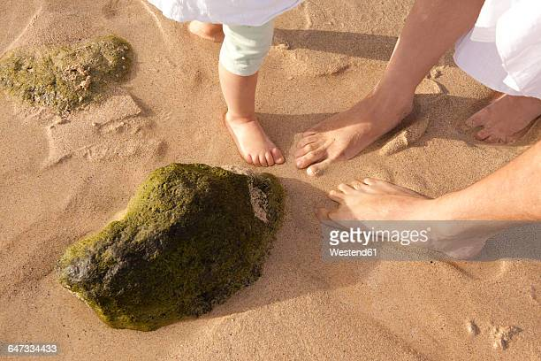 Feet of family standing in sand on beach