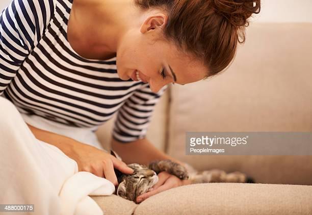 Feline fraternizations