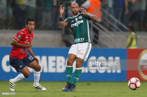 Felipe Melo of Brazil's Palmeiras falls as he tries to control the ball next to Cristhian Machado of Bolivia's Jorge Wilstermann during their...