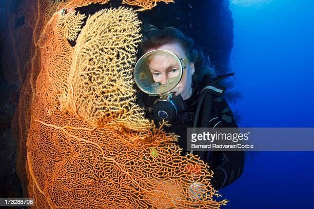 femal diver looking at sea fan