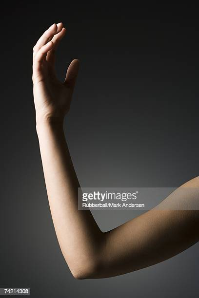 Female arm and elbow