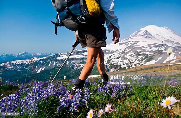 Female backpacker on Cowlitz Divide, Mount Rainier National Park, Washington, USA