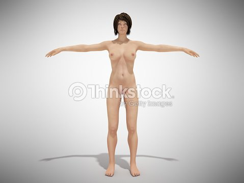 A Female Body Anatomy For Books 3d Render On White Stock Photo