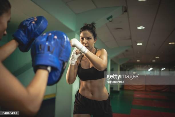 Female Boxer At Training