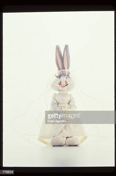 A female bunny wears a wedding dress at the Warner Bros Studio store October 23 1996 in New York City The store originally a three floor specialty...