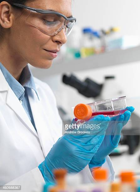 Female cell biologist holding a flask containing stem cells, cultivated in red growth medium, to investigate disease