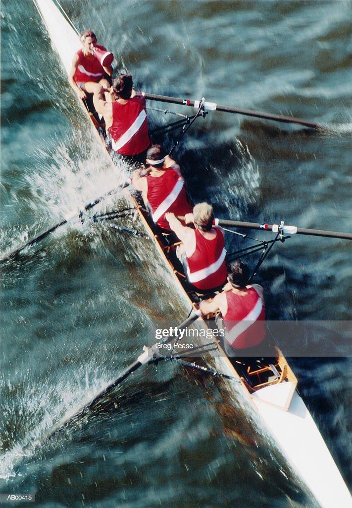 Female coxswain leading rowing crew, elevated view : Stock Photo