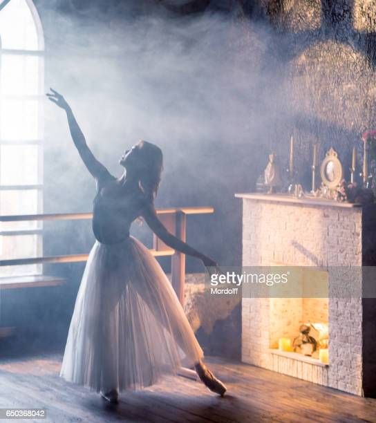Female Dancer Performs Ballet Dance