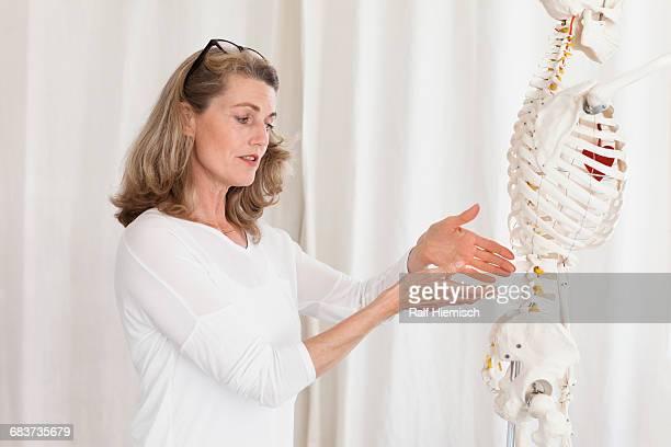 Female doctor showing skeleton while explaining anatomy at clinic