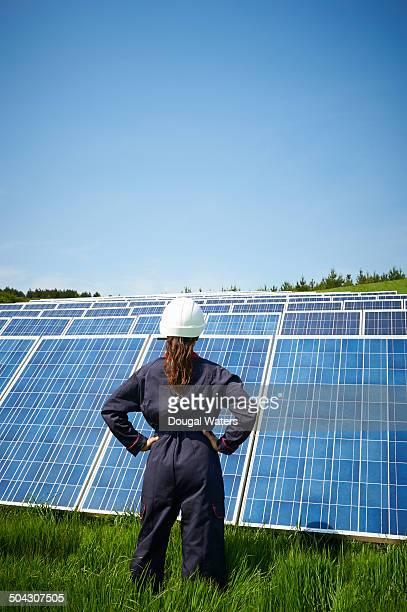 Female engineer looking at solar panel farm.