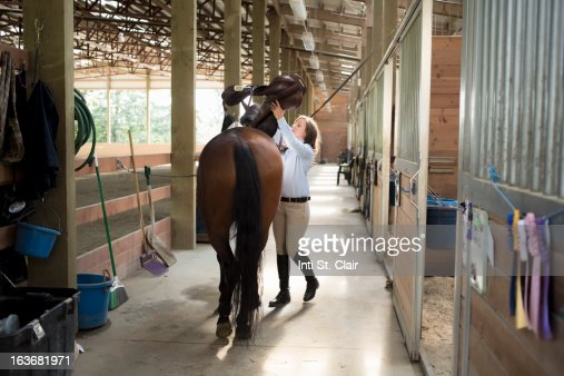 Female equestrian prepping horse in stable : Stock Photo