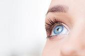 Female eye macro shot on white background