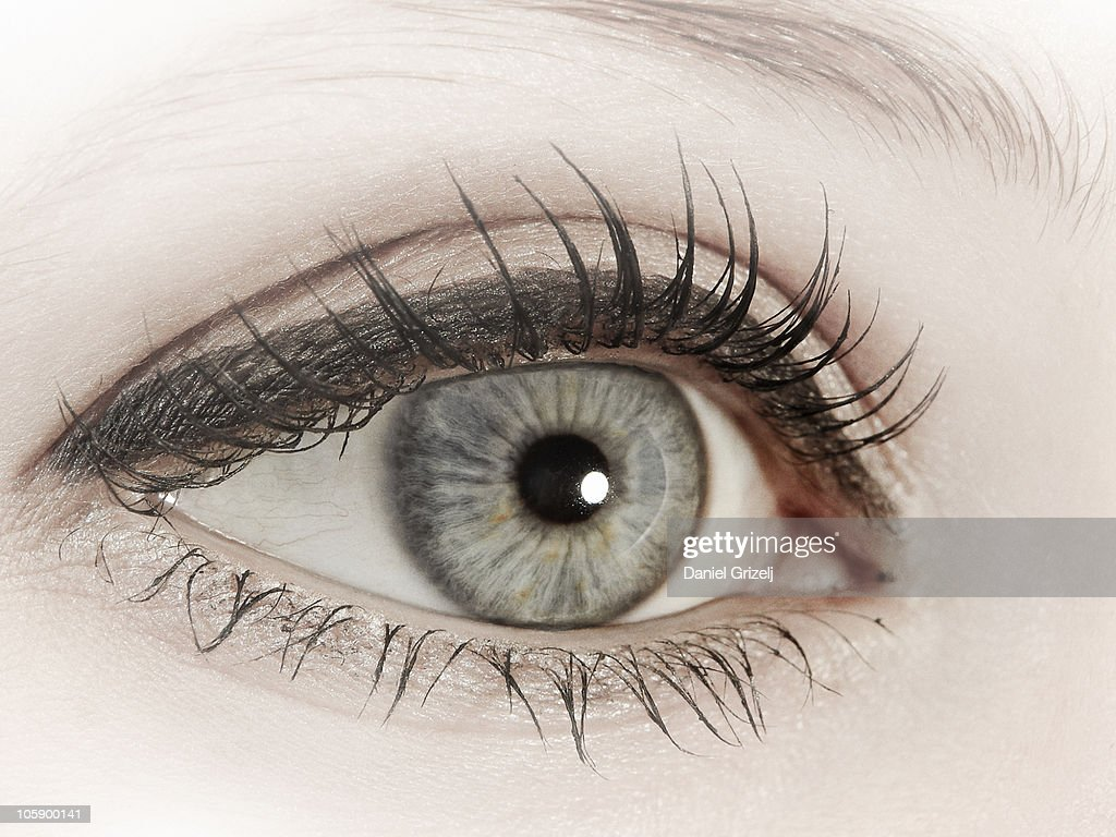 female eye : Stock Photo