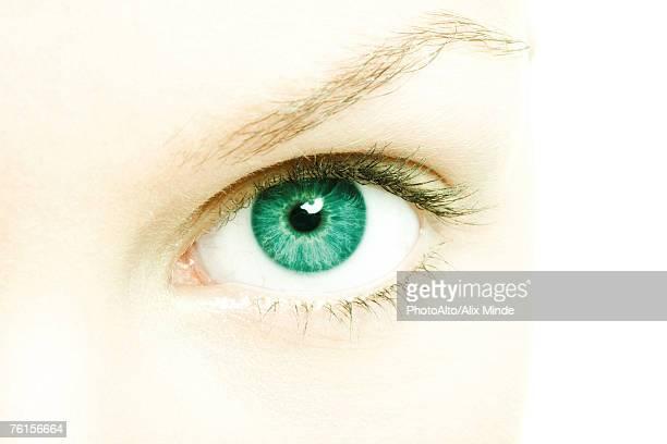 Female eye