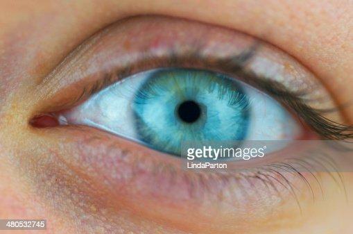 Female Eye Up Close : Stock Photo