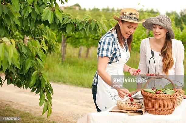 Female Farmer Selling Organic Cherries