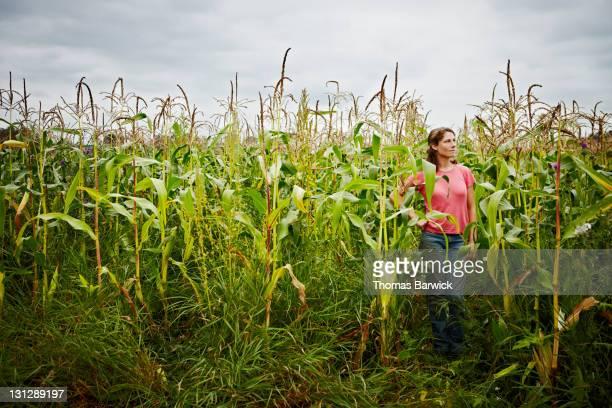 Female farmer standing in corn field looking out