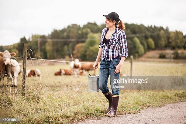 Female farmer with bucket walking while animals grazing in field
