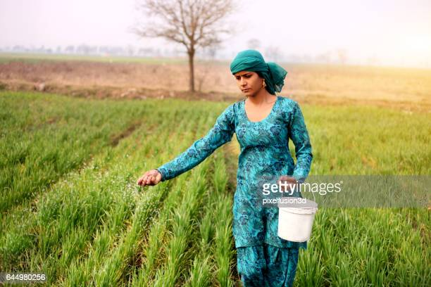 Female farmer working in the field
