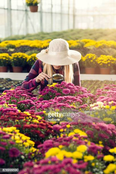 Female florist looking flowers thru magnifying glass at greenhouse