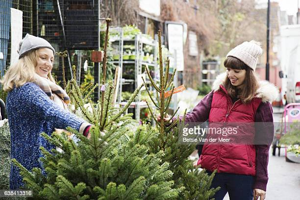 Female friends are comparing christmas trees at garden centre.