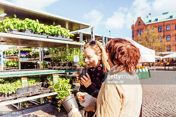 Female friends examining plants before buying in market at town square