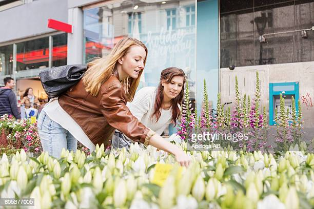 Female friends shopping flowers at market