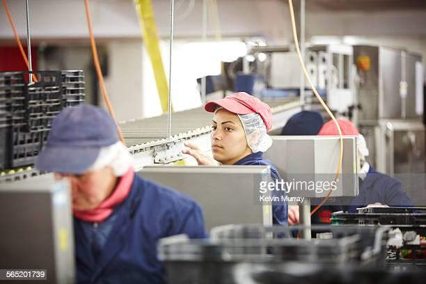A female fruit packer looks along the line
