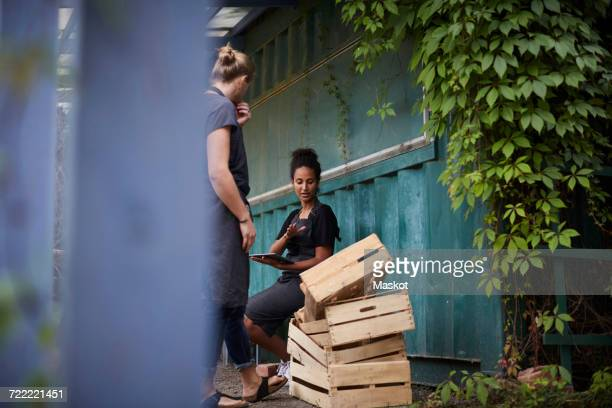 Female gardener holding digital tablet while communicating with friend over crates in yard