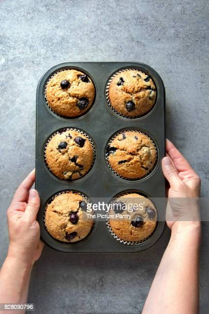 Female hands holding a pan with freshly baked blueberry muffins.Top view