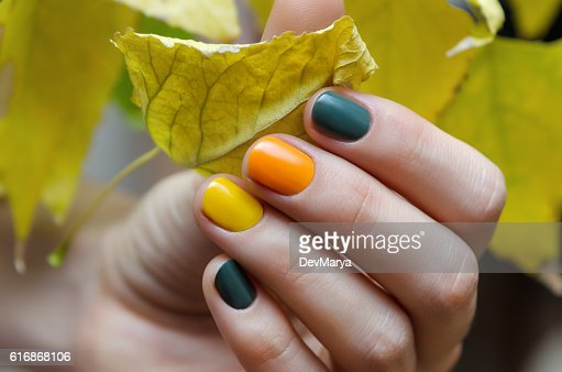 Female hands with color nail design. : Stock Photo
