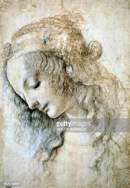 Female head by Leonardo da Vinci drawing 428E recto