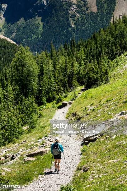 Female hiker on gravel trail on mountain hillside with treed mountain in the background