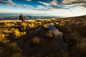 Female hiker stands among tussocks