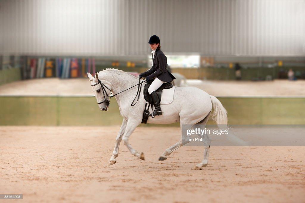 Female horse rider practising dressage. : Stock Photo