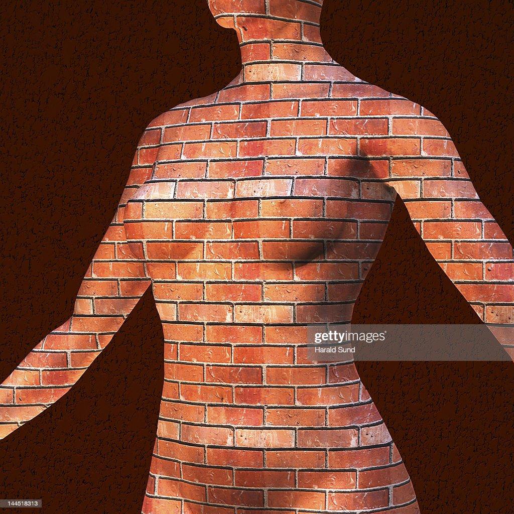 Female human torso constructed from bricks : Stock Photo