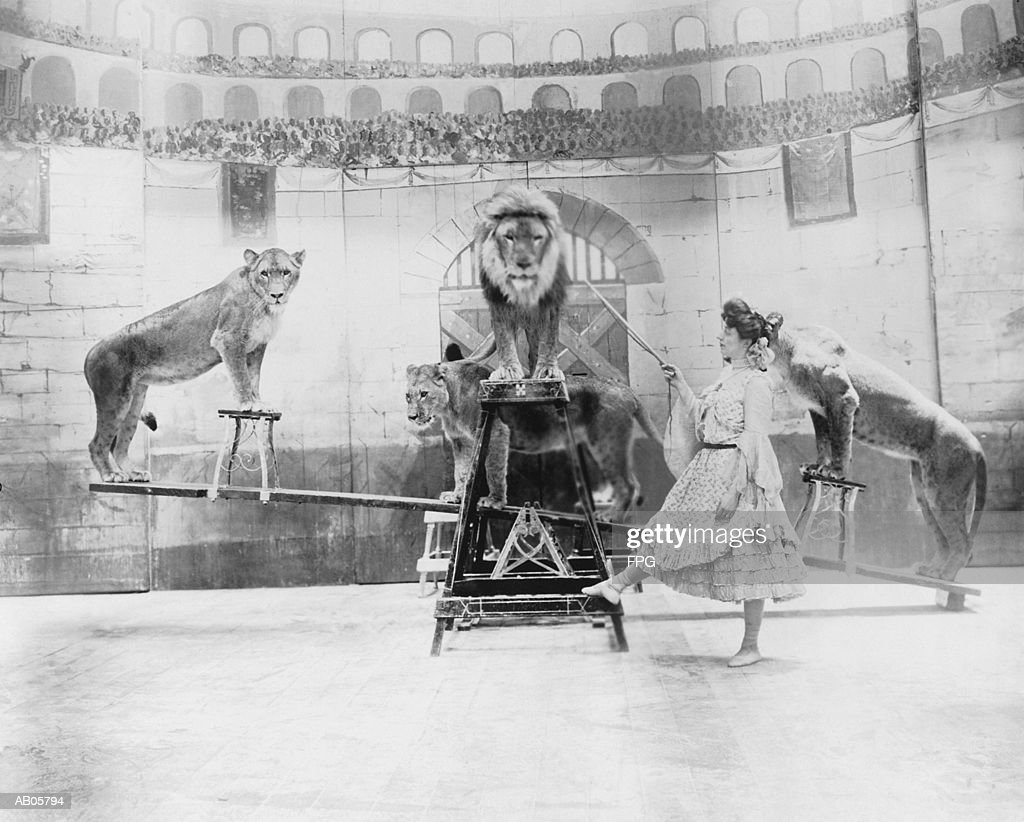 Female lion tamer performing (B&W) : Stock Photo