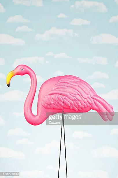 Weibliche Pink Flamingo gegen Himmel