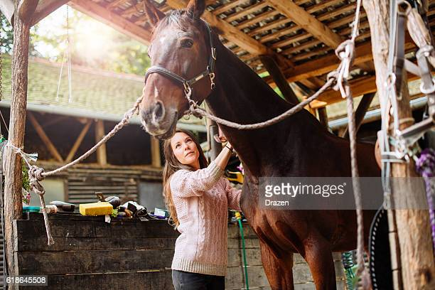 Female rider brushing her mare before the dressage