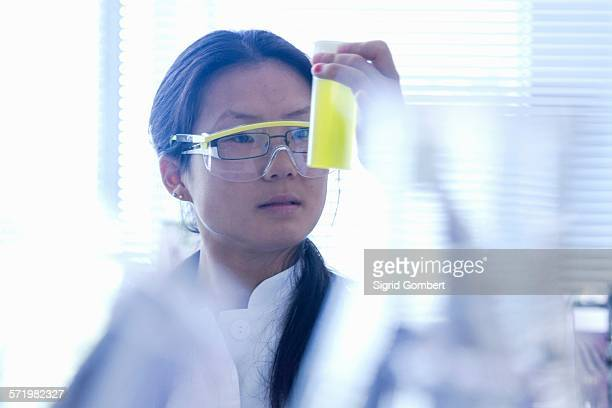Female scientist looking at yellow specimen in laboratory